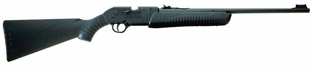 image of a pellet gun rifle
