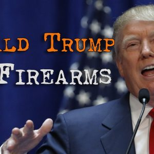 image of donald trump in speech about firearms