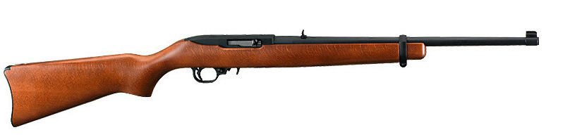 Image of a Ruger 10 22 rifle