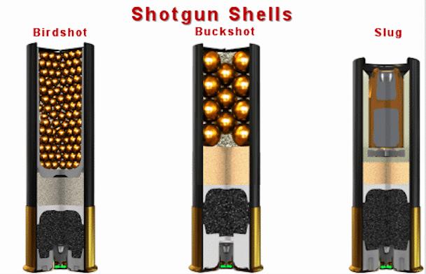 birdshot-buckshot-slug-shotgun-shell-comparison size chart in 2017