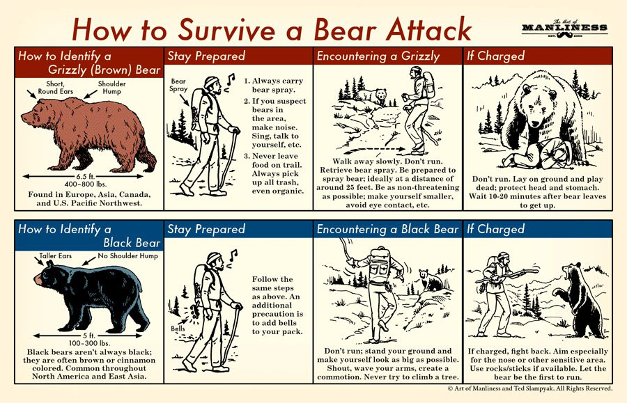 image showing how to stay safe on the trail