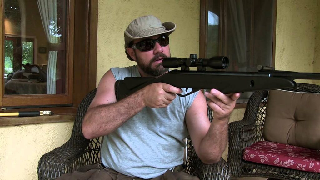 image of the gamo whisper in action