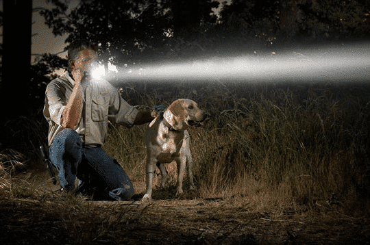 image of a man shines a powerfully bright tactical flashlight in the woods with his dog