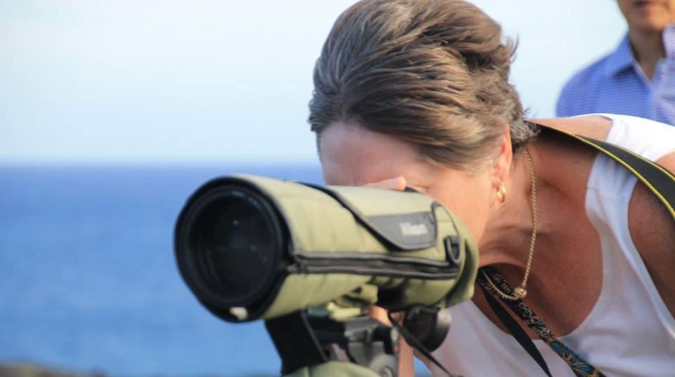 image of a spotting scope