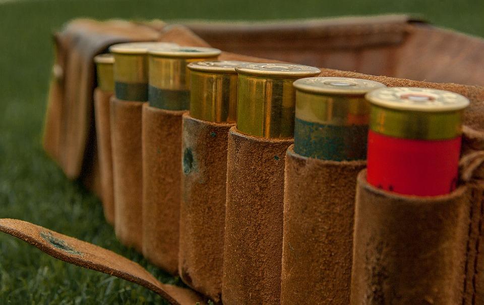image of hunting cartridges