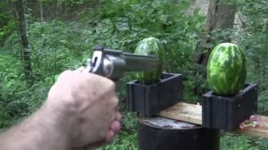 a picture of a guy's hand aiming a revolver at watermelons