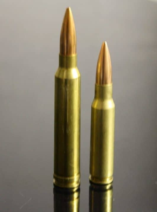 300 Blackout vs 308 Winchester - Best Choice For Deer Hunting