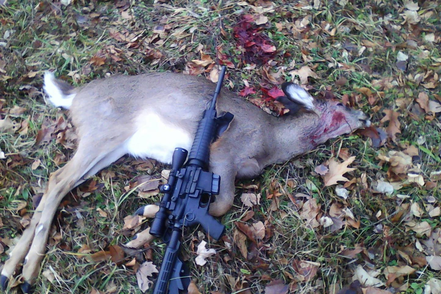 Using An Ar 15 For Deer Hunting