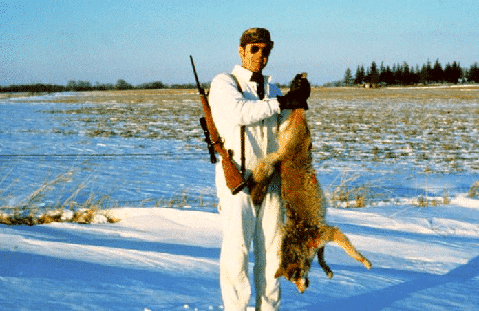 hunting a coyote with rifle