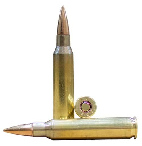 AR 10 ammo