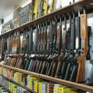 firearms in gun store