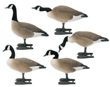Big Foot B2 Full-Body Canada Goose Decoys product image