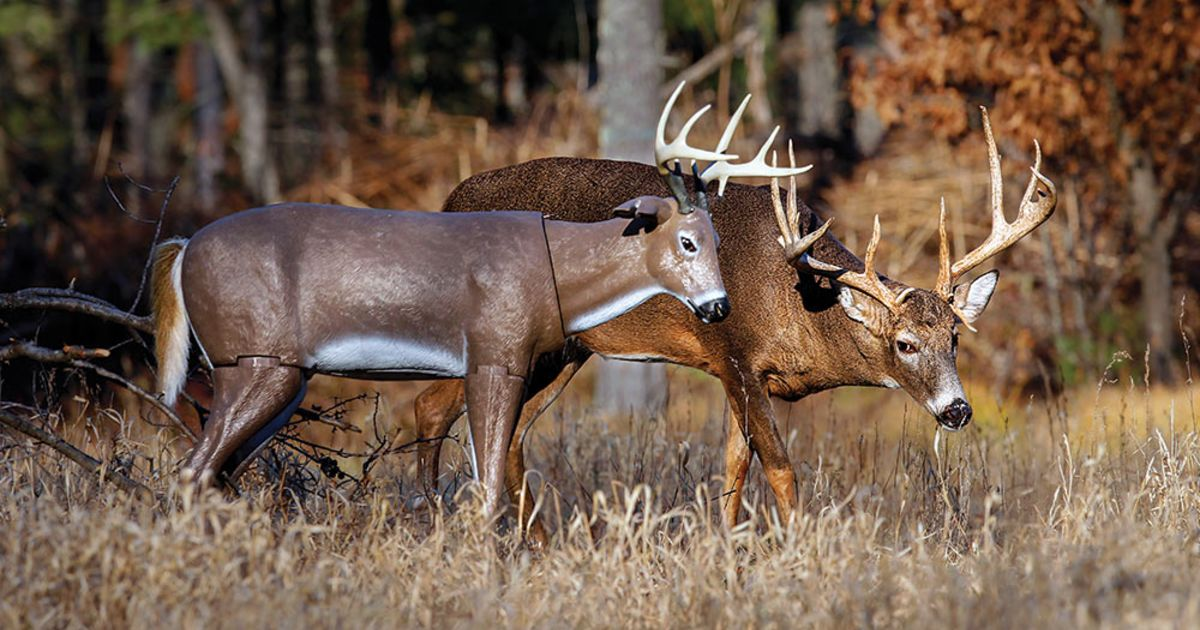 The 3 Best Deer Decoys You Can Buy Today…And How To Use Them