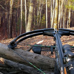 image of a crossbow used for hunting