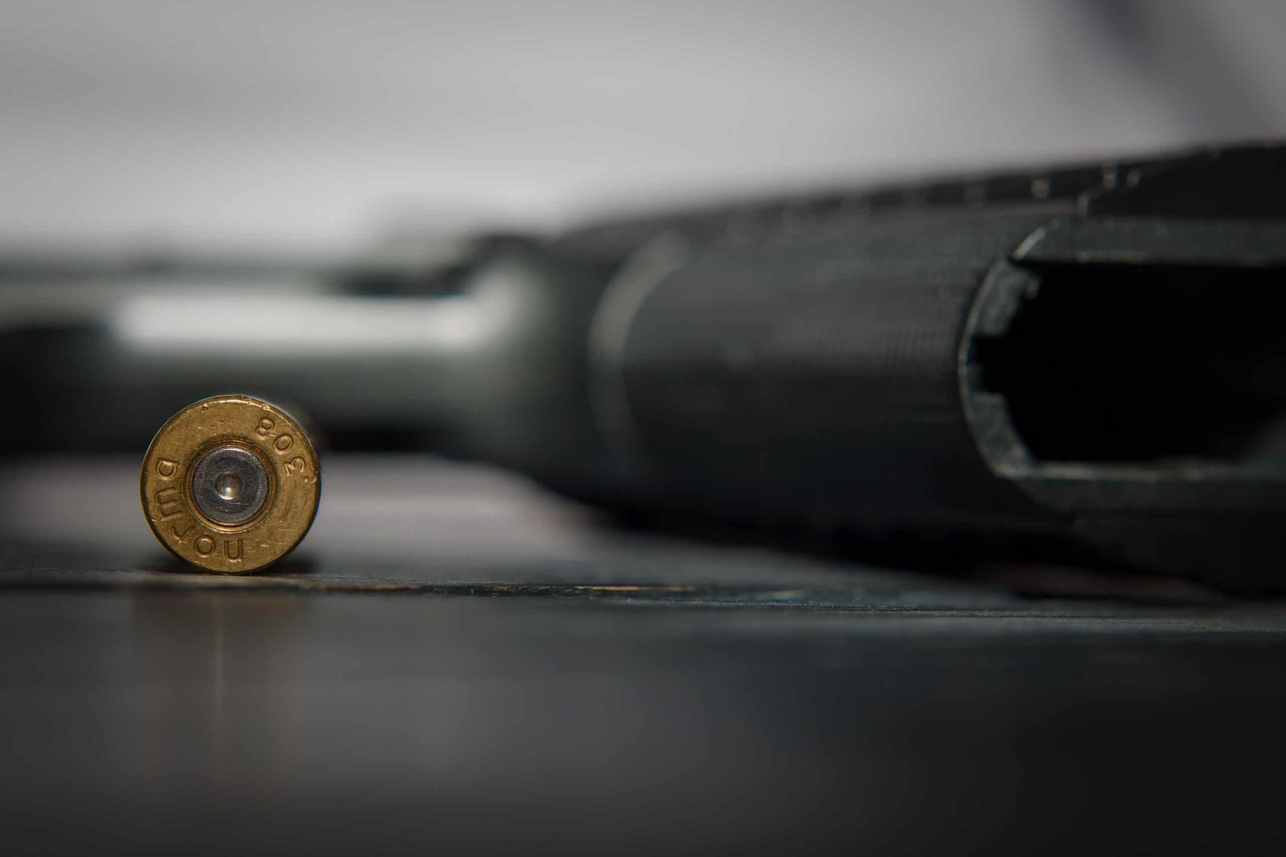 gun with ammunition