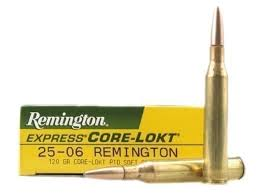 a picture of .25-06 Remington ammo