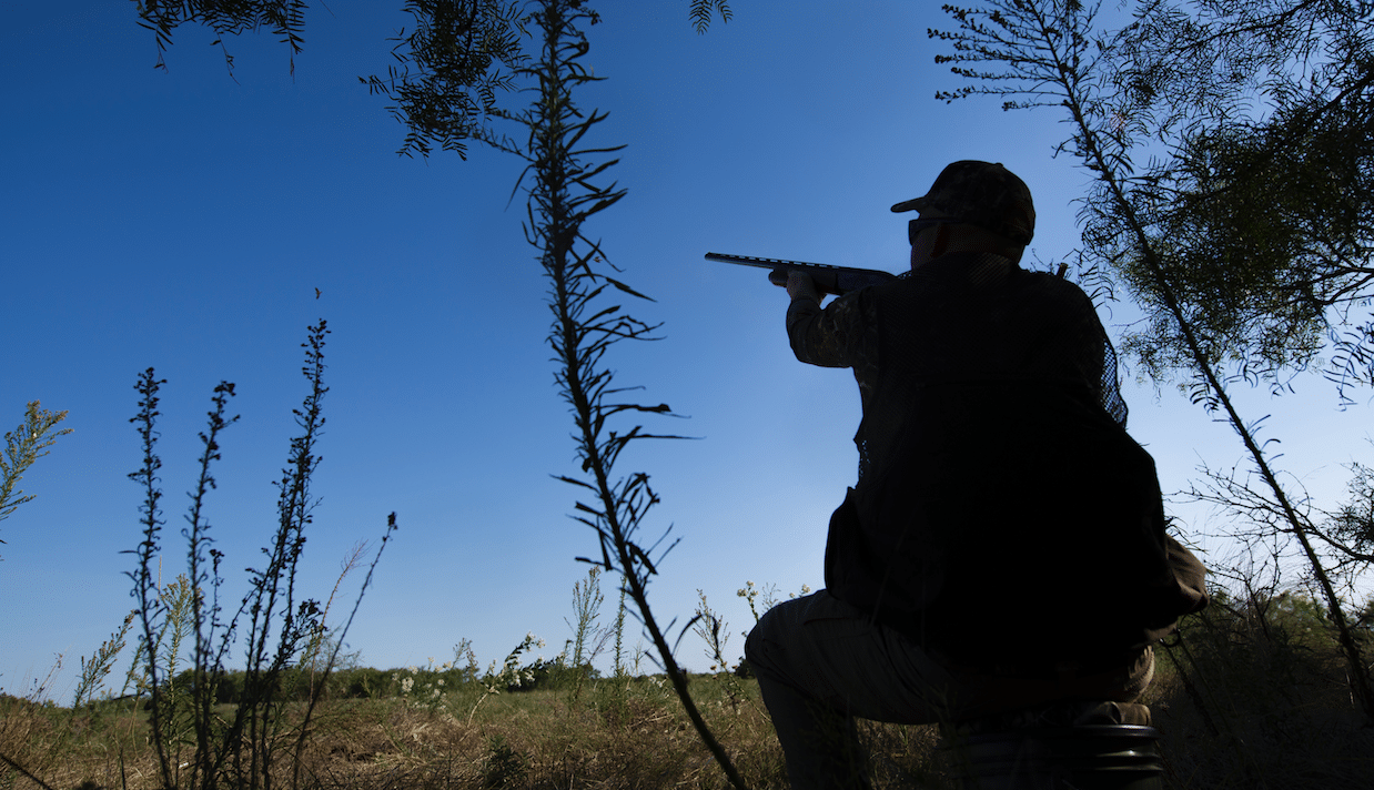 Best Shotguns for Dove Hunting