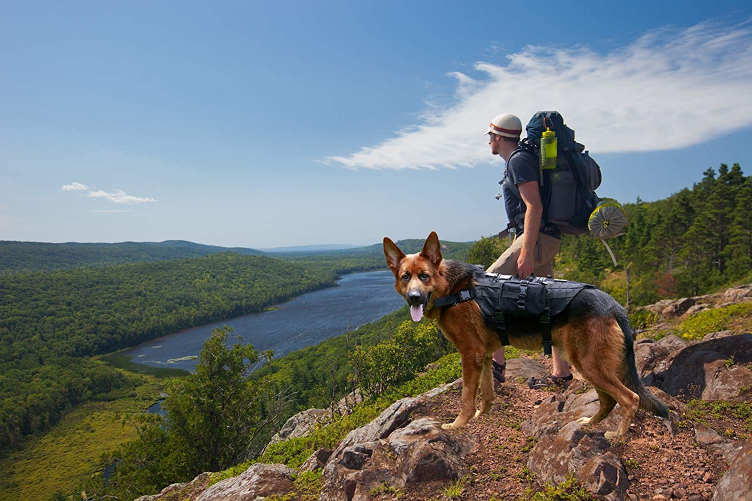 Bugging Out with Your Dog? Here are 9 Items for Your Dog Bug Out Bag